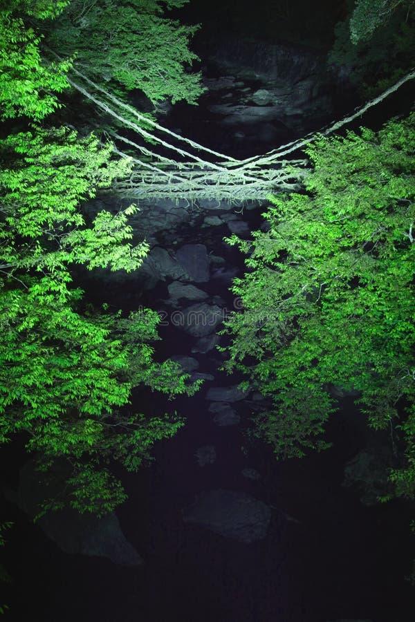 Rebe-Brücke stockfoto