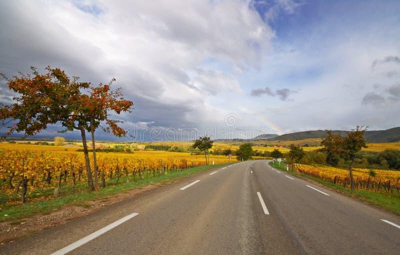 Rebe-Weg-Autobahn lizenzfreies stockbild