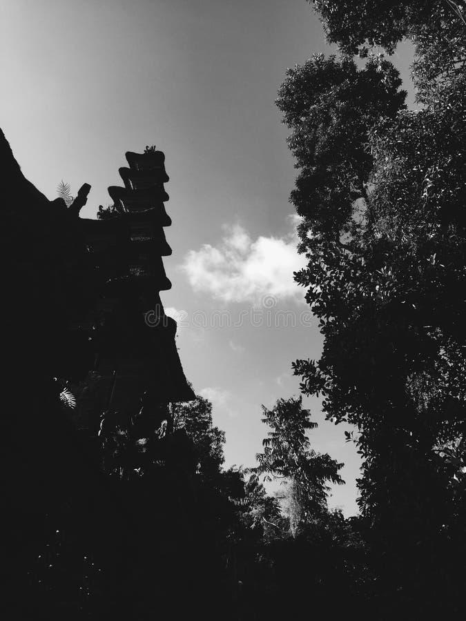 Rebecca 36 Siluetta del tetto e degli alberi del tempio di Bali fotografie stock