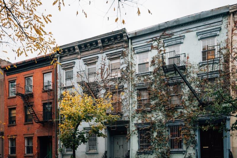 Reben auf einem Wohngebäude im East Village, Manhattan, New York City stockfotografie