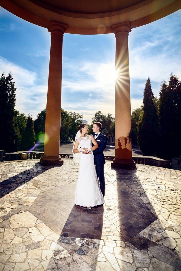 Recém-casado que levanta no parque no dia ensolarado fotografia de stock