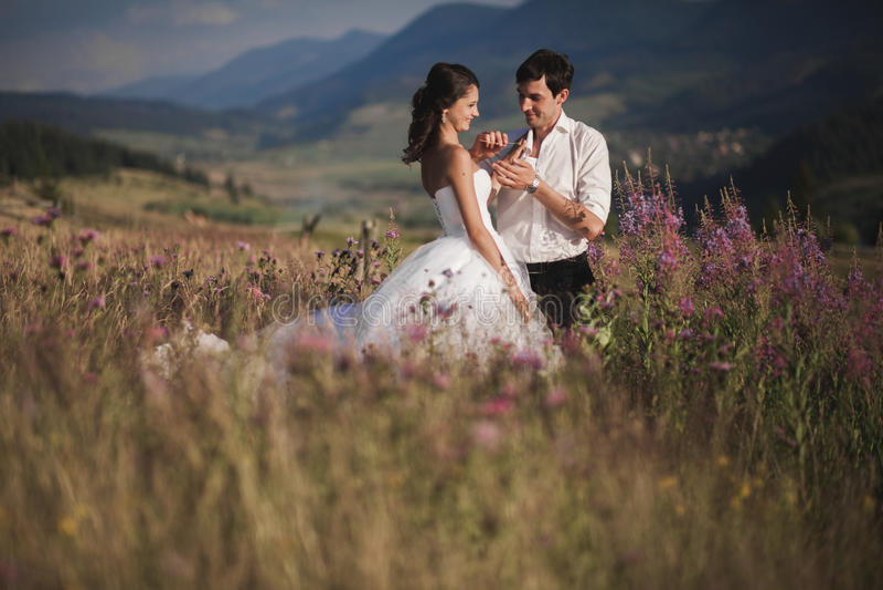 Recém-casados românticos dos pares do conto de fadas que beijam e que abraçam em um fundo das montanhas imagens de stock