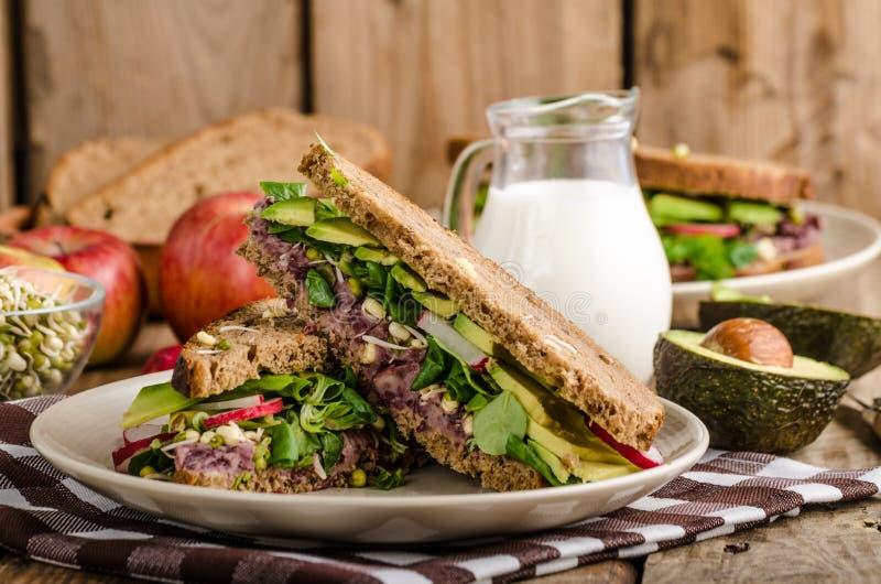 Receita do sanduíche do verão do Chipotle-abacate foto de stock royalty free
