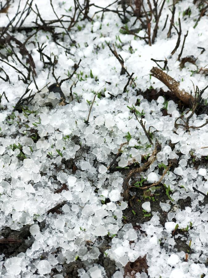 Recente sneeuw met hagelstenen ter plaatse stock afbeelding
