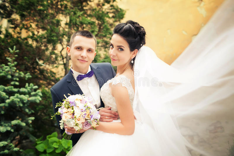 Recentemente baciare della coppia sposata Vento che solleva velo nuziale bianco lungo immagine stock libera da diritti