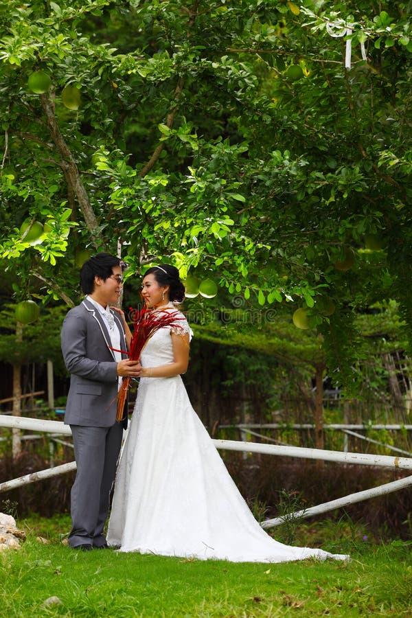 Recentemente casal no parque foto de stock royalty free