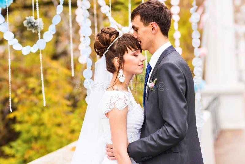 Recentemente casal no parque do outono fotografia de stock royalty free
