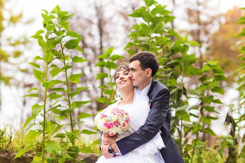 Recentemente casal no parque do outono fotos de stock royalty free