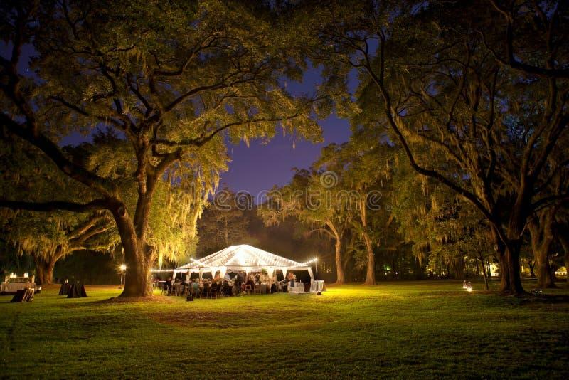 Recepção ao ar livre na noite sob árvores imagens de stock