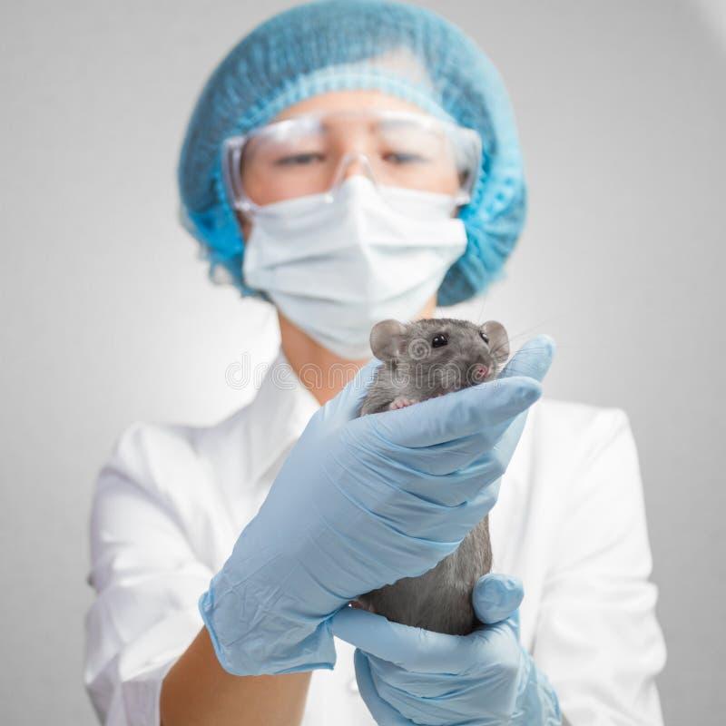 A recepção estava no veterinário