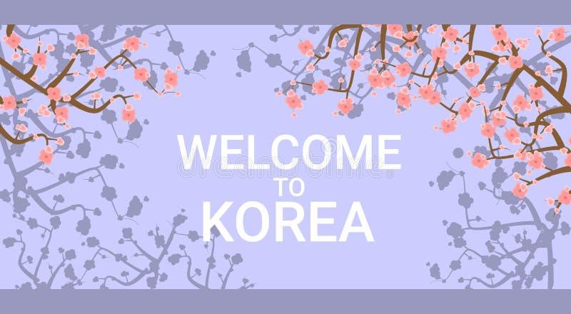 Recepción al cartel que viaja de Corea con Sakura Tree Flowers On Background rosada stock de ilustración