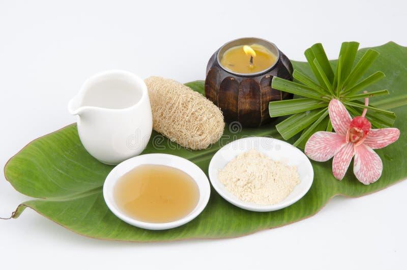 Recept för framsidamaskering med Tanaka, honung, vatten. Ansikts- brunnsort. arkivbild