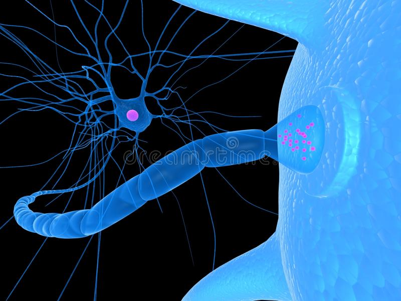 Receptor. 3d rendered close up of receptor and nerve cell royalty free illustration