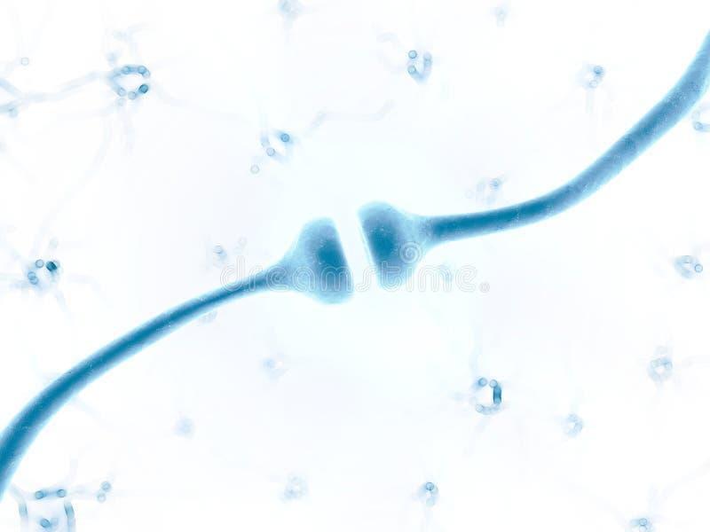 Receptor humano ilustración del vector
