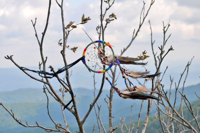 Receveur rêveur d'amulette avec le plan rapproché de plume sur un arbre dans les montagnes photographie stock