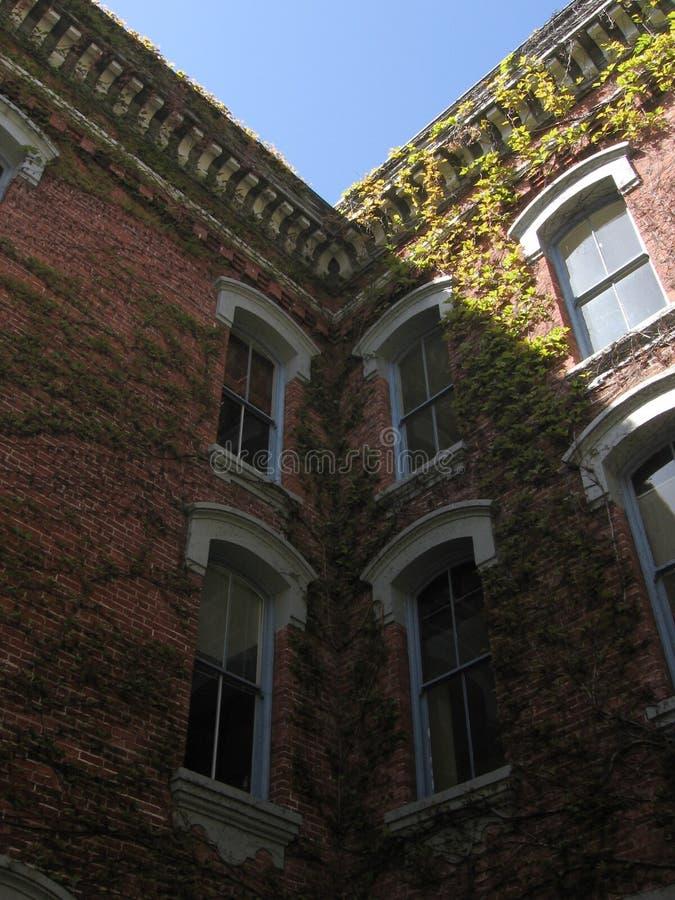 Download Recherche photo stock. Image du architecture, ciel, lumière - 729600