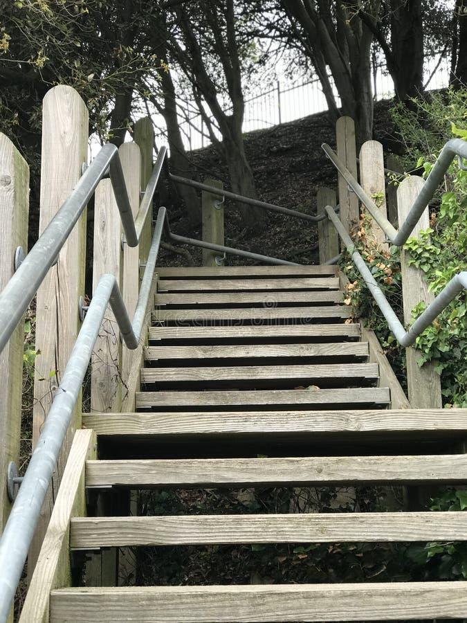 Recherche des étapes en bois photos stock