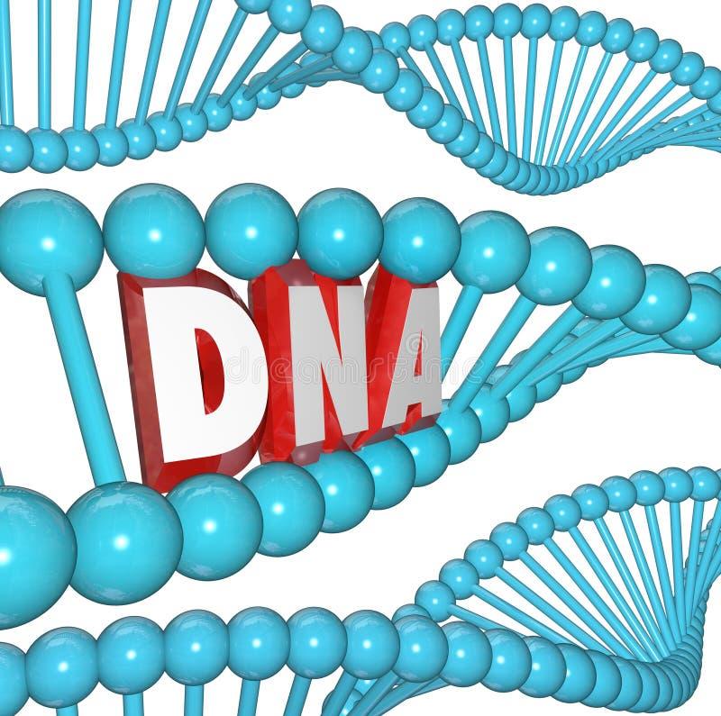 Recherche médicale d'hérédité de la génétique de brin d'ADN Word illustration de vecteur