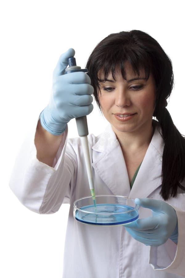 Recherche médicale scientifique photographie stock