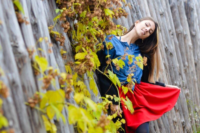 Recht junge Modefrau, die rotes Mini trägt lizenzfreie stockbilder