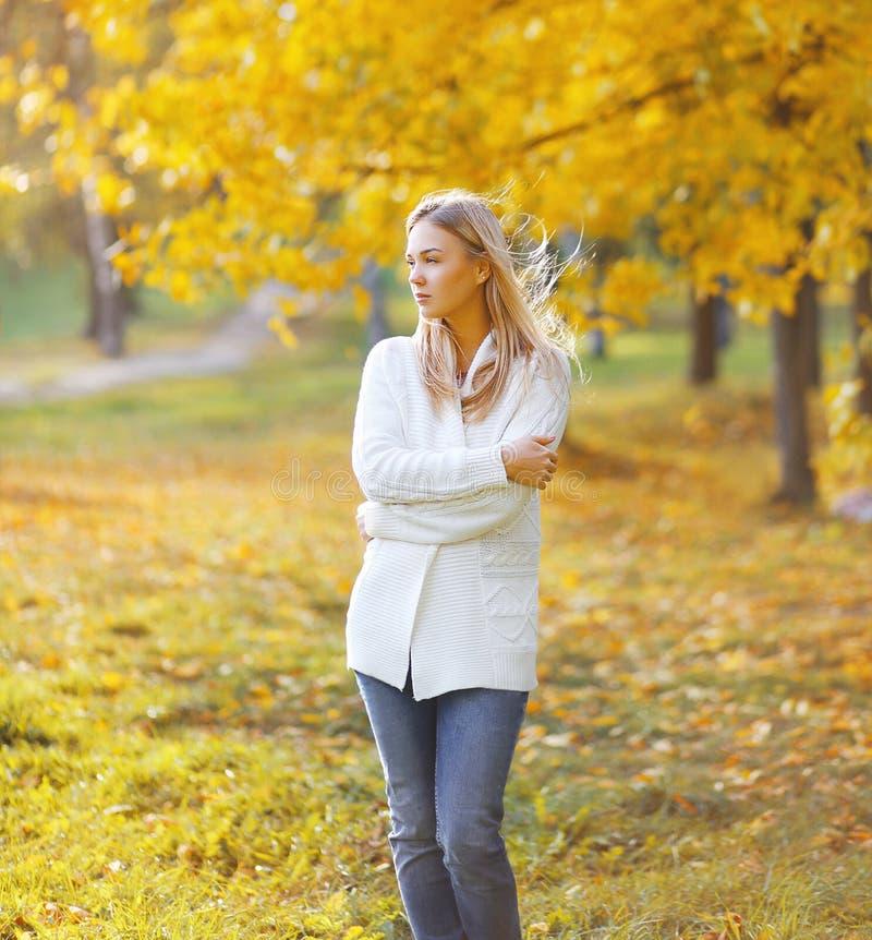 Recht sinnliches Mädchen am sonnigen Herbsttag stockbild