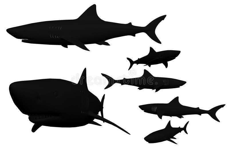 Rechte haaibeelden vector illustratie