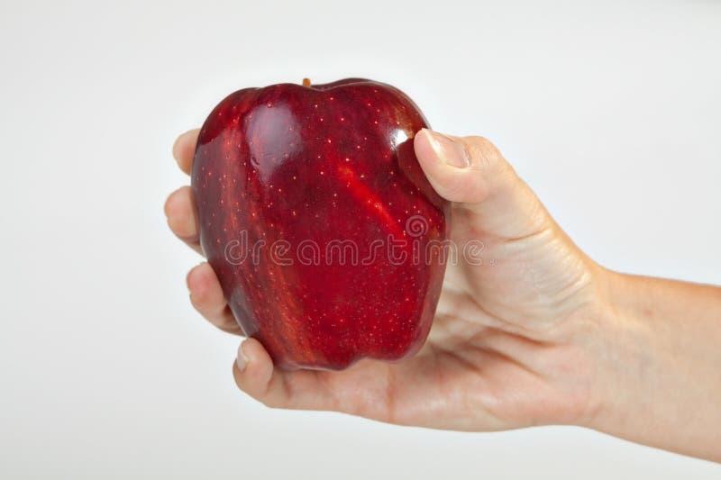 Rechte Hand, die rotes Apple hält stockbild