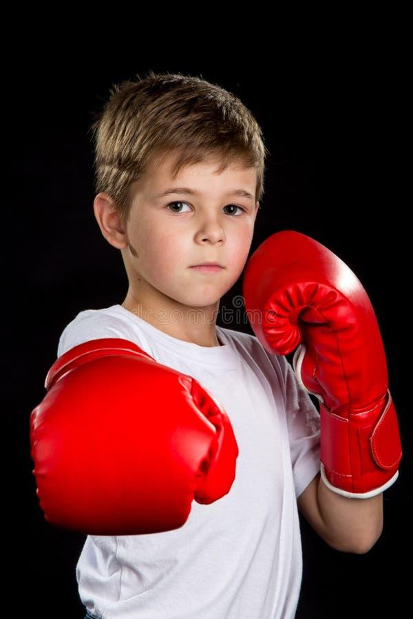 Rechte het in dozen doen aanvalsschop, demonstratie in rode bokshandschoenen Zeker ernstig bokserportret stock afbeelding