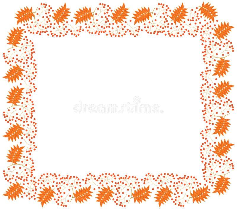 Rechteckiger Herbstrahmen von Beeren, von Niederlassungen und von rot-orange Blättern der Eberesche auf einem weißen Hintergrund stock abbildung
