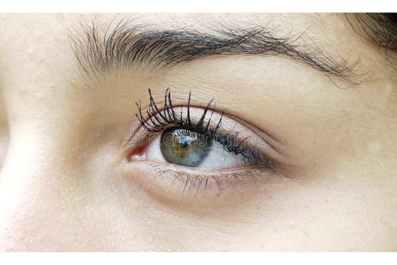 Download Rechtes Auge stockfoto. Bild von überzeugung, nachforschung - 37574