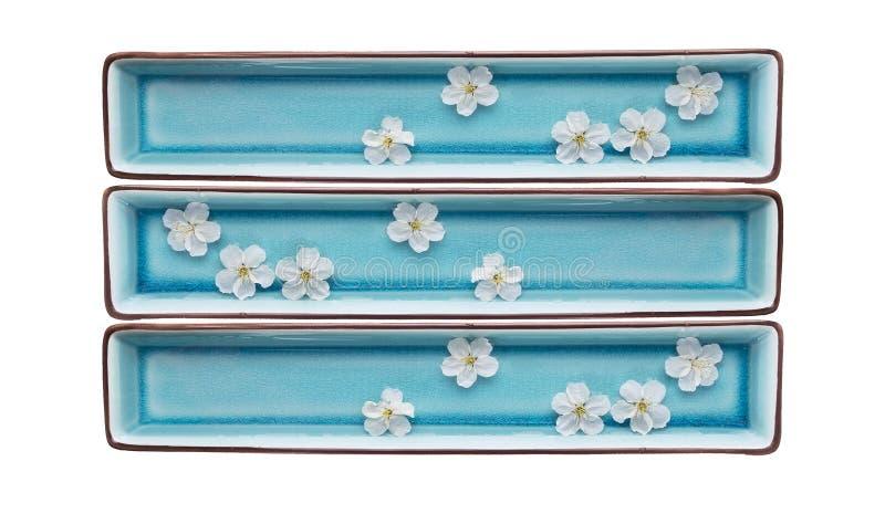 Rechthoekige blauwe kommen met geïsoleerd water en witte bloemen, royalty-vrije stock fotografie
