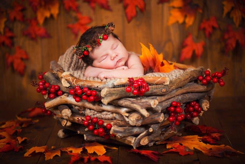 Recién nacido lindo en una guirnalda de conos y de bayas en una jerarquía de madera con las hojas de otoño imagen de archivo libre de regalías