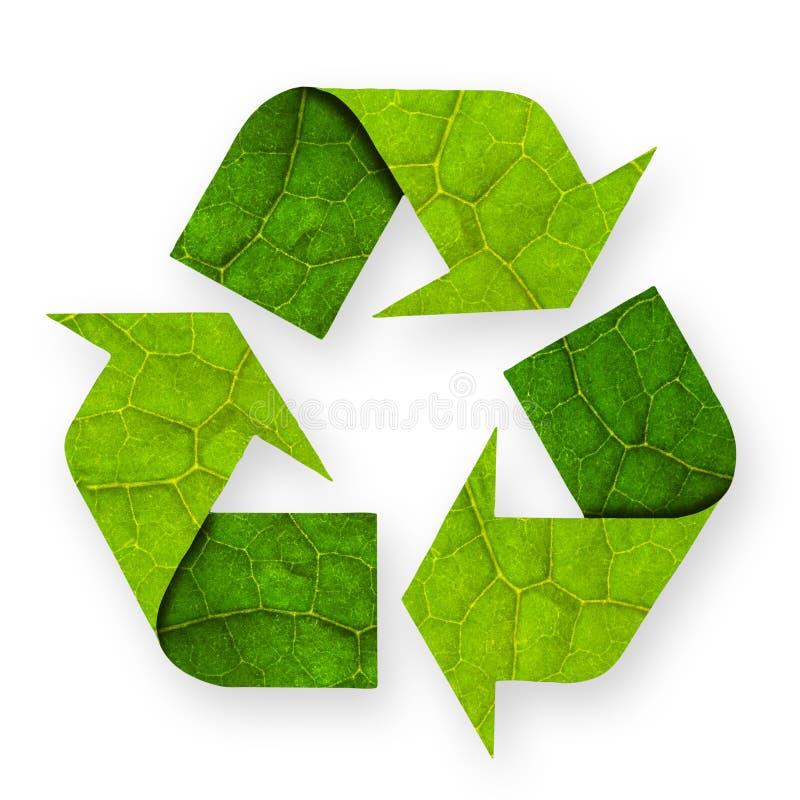Recicl a folha do símbolo. ilustração royalty free
