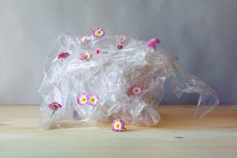 Reciclaje de residuos pl?stico, deformaci?n pl?stica con las flores frescas rosadas hermosas de la margarita de los wildflowers e imagen de archivo libre de regalías