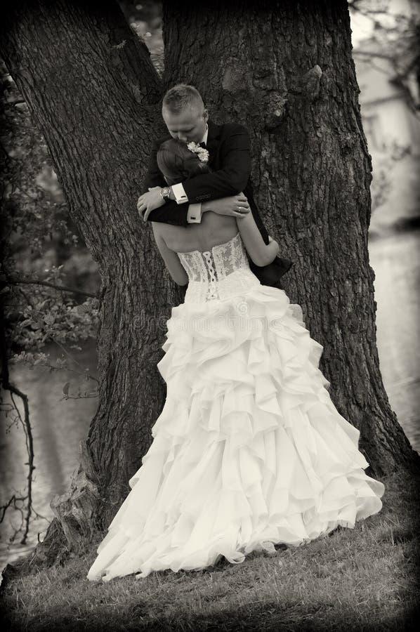 Recienes casados en parque fotografía de archivo