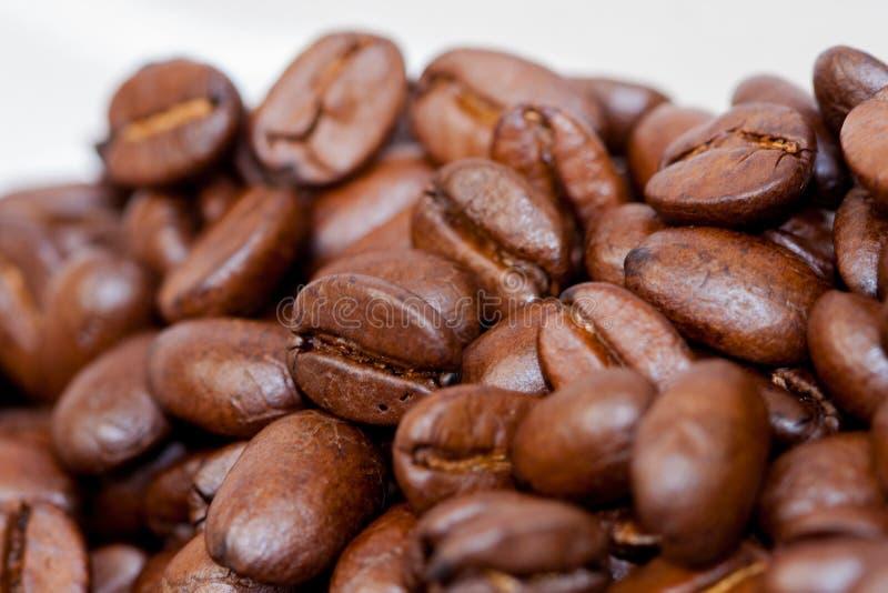 Recientemente molido habas del caf? asadas con las frutas de la planta del caf?, en el fondo blanco fotos de archivo libres de regalías