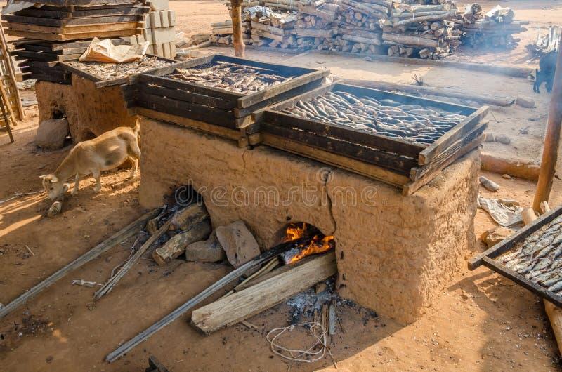Recientemente pescados del cought que son ahumados sobre el horno tradicional de la arcilla en la costa de Ghana, África occident imagenes de archivo