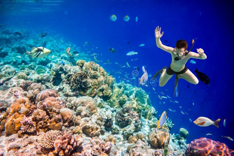 Recife de corais do Oceano Índico de Snorkeler Maldivas imagens de stock
