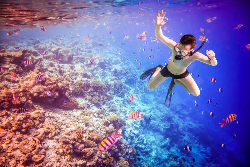 Recife de corais do Oceano Índico de Snorkeler Maldivas fotografia de stock