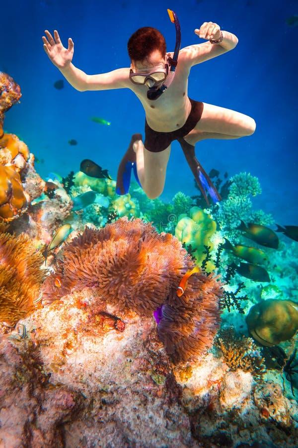 Recife de corais do Oceano Índico de Snorkeler Maldivas imagens de stock royalty free