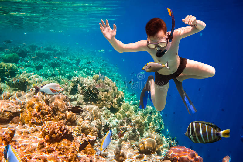 Recife de corais do Oceano Índico de Snorkeler Maldivas fotos de stock