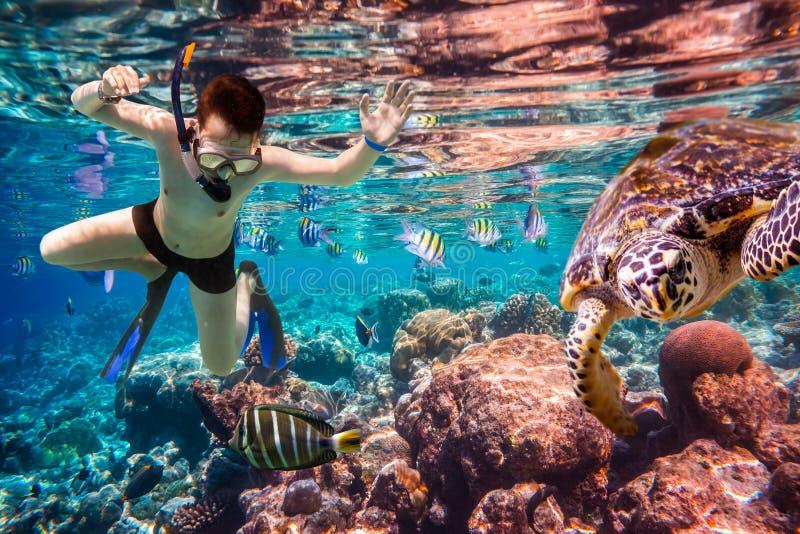 Recife de corais do Oceano Índico de Snorkeler Maldivas foto de stock