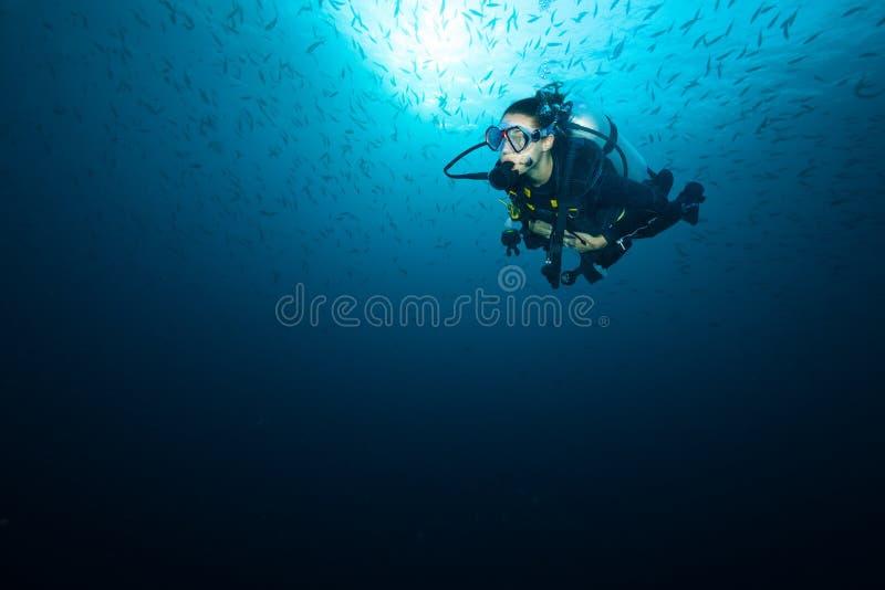 Recife de corais de exploração do mergulhador de mergulhador da jovem mulher foto de stock