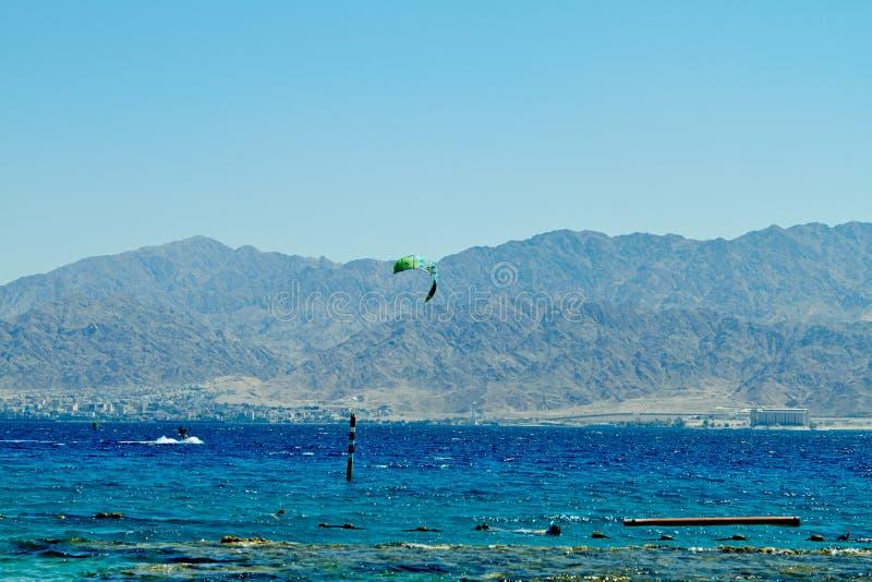 Recife de corais no Mar Vermelho Eilat imagem de stock