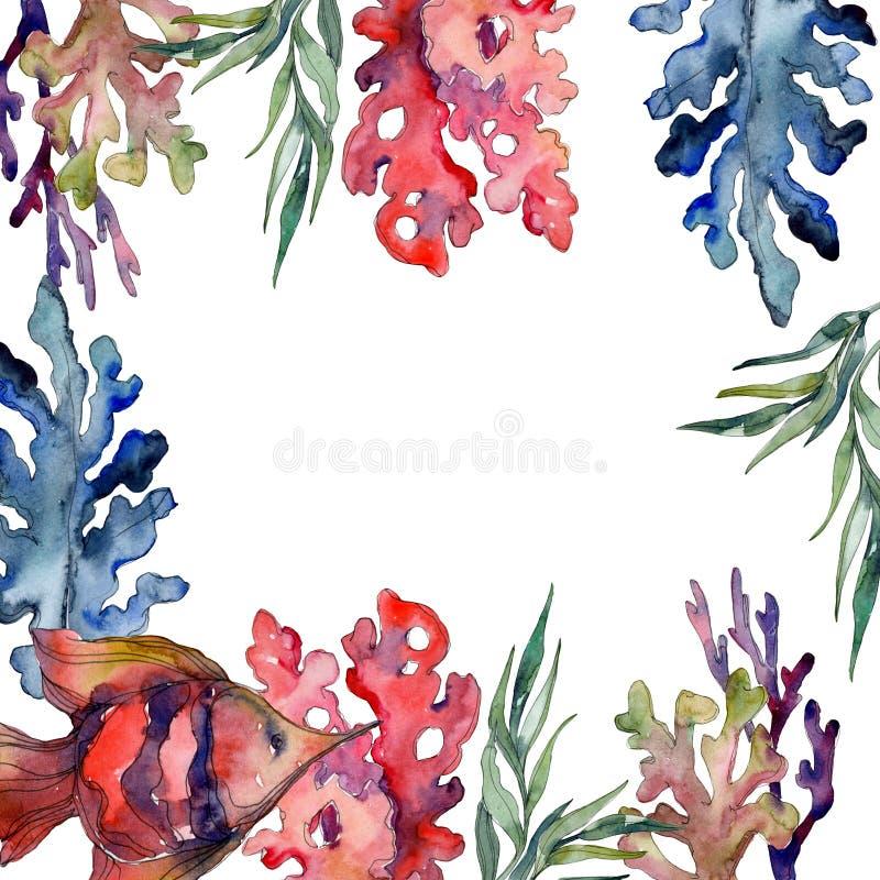 Recife de corais subaquático aquático vermelho e azul da natureza Jogo do fundo da aguarela Quadrado do ornamento da beira do qua ilustração royalty free