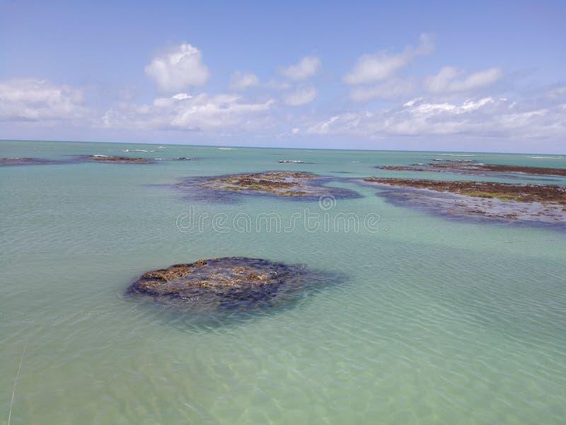 Recifes do oceano da agua potável foto de stock royalty free