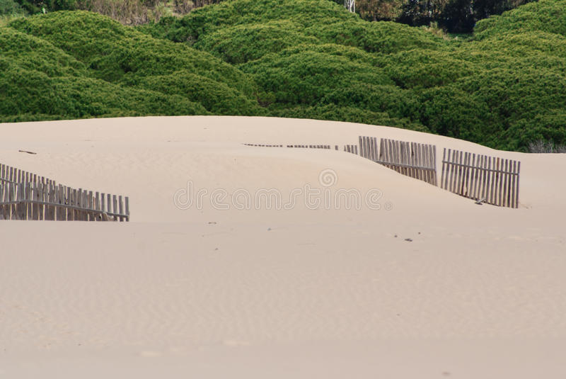 Recinti di legno sulle dune abbandonate della spiaggia a Tarifa, Spagna fotografia stock libera da diritti