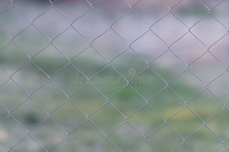 Download Recinto Del Reticolato Del Reticolato Fotografia Stock - Immagine di metallo, sicuro: 55362840