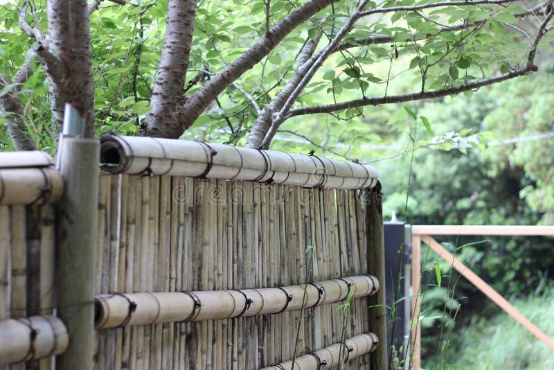 Recinto di bambù giapponese con gli alberi nei precedenti fotografia stock libera da diritti