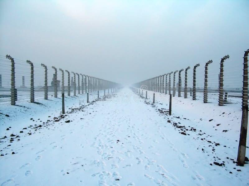 Recinto di filo metallico a Auschwitz immagine stock libera da diritti